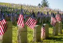 Memorial day flags in a cemetery